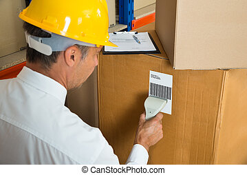 Manager Scanning Cardboard Box With Barcode Scanner -...