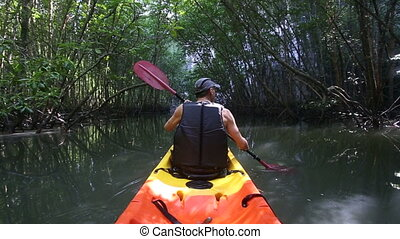 old man paddles on kayak down river among mangrove jungle -...