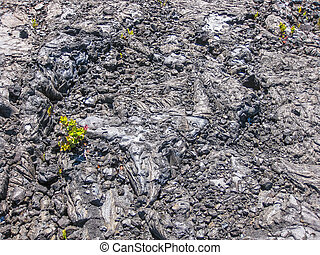 Lava flow - Closeup of lava flow cooled in Volcano National...