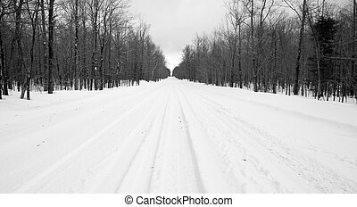 Desolate Country Backwoods Road Covered in Fresh Snow - Deep...