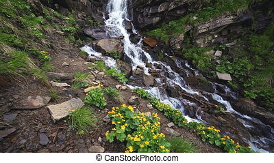 Beautiful small waterfall In Mountains, Ukraine.