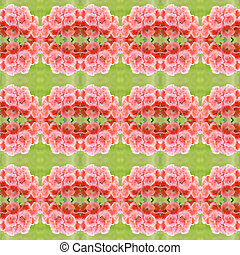 bicolor geraniums seamless pattern background