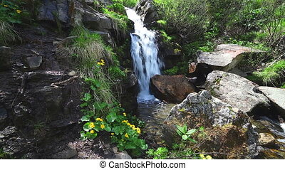 Beautiful small waterfall In Mountains, Ukraine