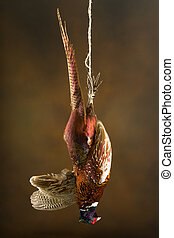 Beautiful fowl - Still life of hunting scene with a hanging...