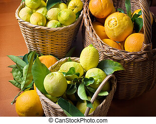 Citrus harvest - Baskets full of citrus fruits after harvest...