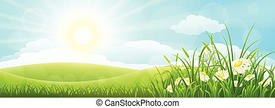 Summer meadow landscape with green grass, flowers, hills and...