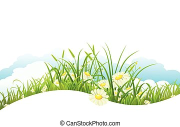 Summer meadow banner - Meadow with green grass and flowers...