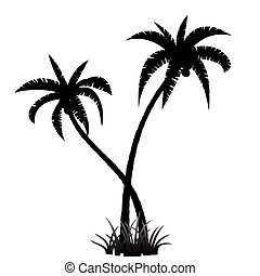 Palm tree silhouette - Black palm tree silhouette on white...