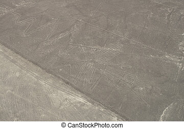 nasca bird - drawing in the Nazca Desert, view from airplane...