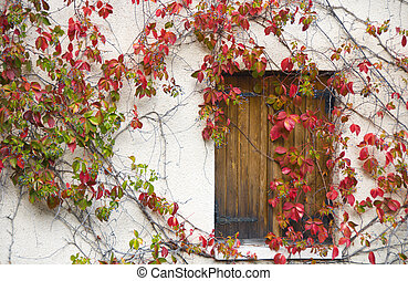 Colorful window - Traditional wooden window from a house in...