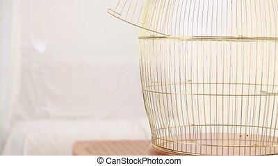 Empty golden birdcage - TWO FRAMES. Gold empty cage is on...