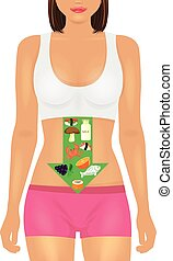 Proper nutrition Vector illustration