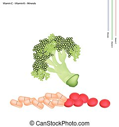 Broccoli with Vitamin C and Vitamin K - Healthcare Concept,...