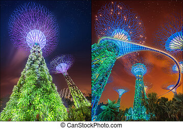 Collage of Supertree at Gardens by the Bay, Singapore -...