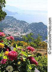 Capri - Beautiful vegetation with pink flowers on the cliff...