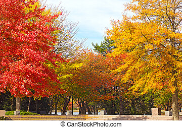Franklin Delano Roosevelt Memorial - Colorful deciduous...