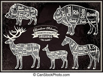 vector diagram cut carcasses boar, bison, deer, horse -...