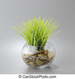 Gold Coins, Grass and Bowl - Busine - Gold Coins and Grass...