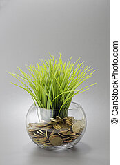 Gold Coins, Grass and Bowl - Business Concept - Gold Coins...