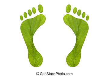 Lábfej, nyomtat, zöld, emberi