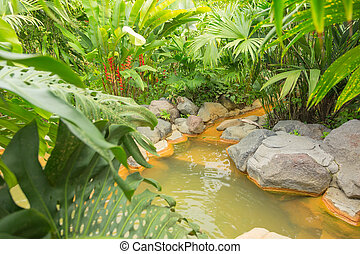 Arenal hot spring, Costa Rica - Thermal springs in Costa...