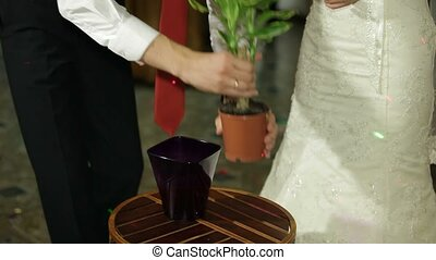 Bridal Wedding Tradition - Family tradition . Young couple...