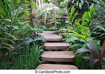 2. Stepped path through the Thai nature - Stepped path...