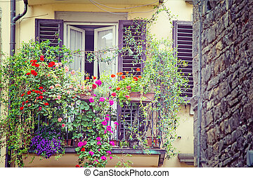 flowers in a vintage balcony in Florence
