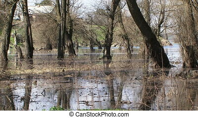 Flood At Park Zone In Spring - Natural disaster This is a...