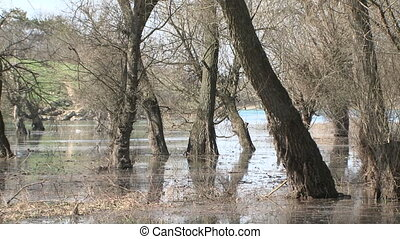Zoom Out: Flood At Grove Zone In Spring - This is a zoom out...