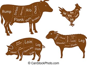 Beef, pork, chicken and lamb meat cuts diagram with brown...