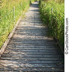 Boardwalk Through The Wetland - Boardwalk through the...