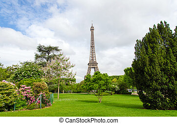Champ de Mars Park with Eiffel Tower in Paris, France