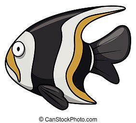 Moorish idol Underwater fish