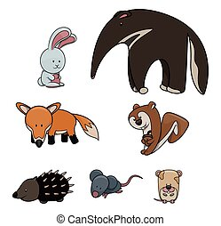 Cute animal : Rabbit,Tappir,Fox,Squrrel,Hedgehog,Rat,Hamster