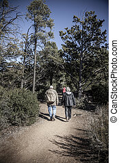 Hikers on a trail - Senior couple is hiking on a trail in...