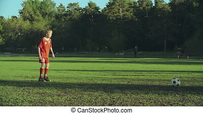 Sweet Victory - Skillful forward player striking a goal...
