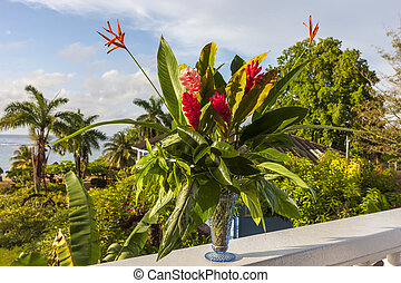 beautiful tropical red ginger flowers - A beautiful tropical...