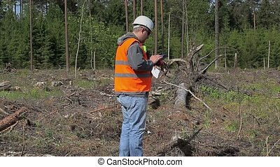 Forest engineers with documents in destroyed forest