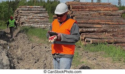 Forest officers near to lumber pile