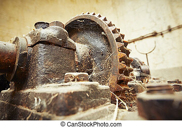 Abandoned factory - Cog wheel with cobweb in abandoned...
