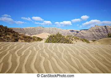 abstract yellow dune beach hil and mountain in lanzarote -...