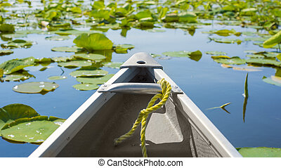 Canoe among lily pads - Tip of a canoe sailing among lily...