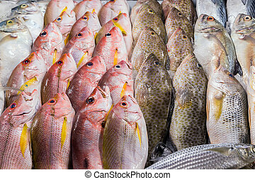 Fresh seafood background - fresh fish seafood in market...