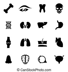 Vector black anatomy icon set
