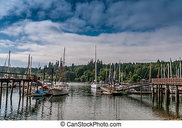 Boats in a Marina - Boats in a marina in the Pacific...