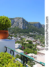 Capri - Flower pot and green vegetation on the cliff...