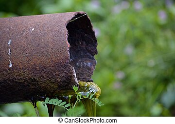 Rusty Pipe with Algae Sludge - A rusty pipe leaks sludge and...