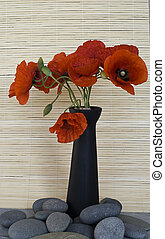 red poppy flower in a vase