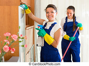Professional cleaners at work